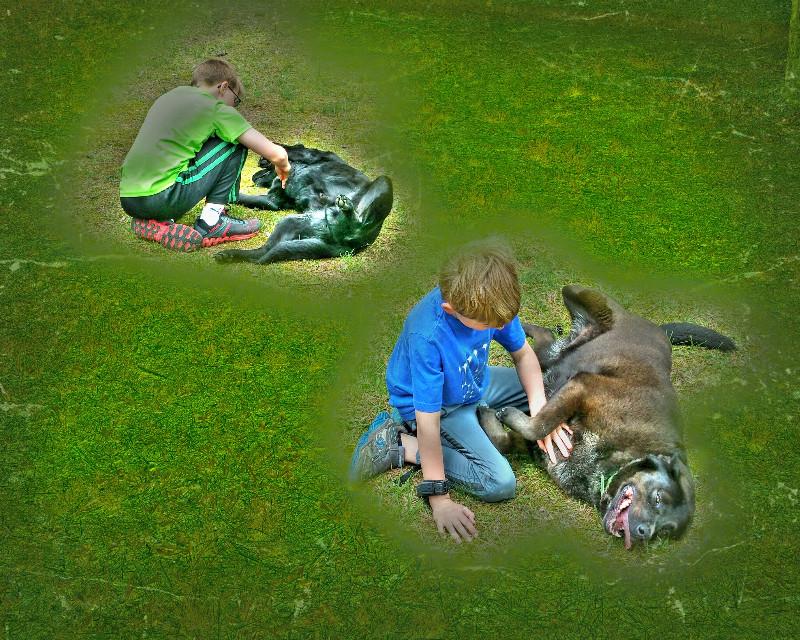 #scratch #dogs #family #boys #brothers #waptexturemask