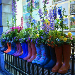 rainboots colorful flower