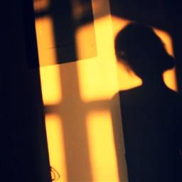 repost summer sunlight colorsplash shadow