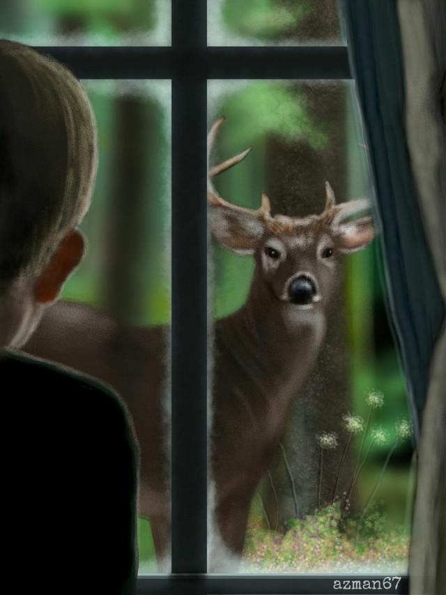 #mydrawing #throughmywindow #dcwindow #illustration #animals #window #people #drawing
