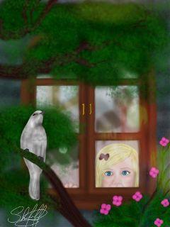 dcwindow window colorful petsandanimals nature