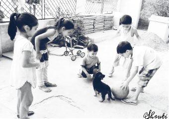 dailytag children playing ball puppy
