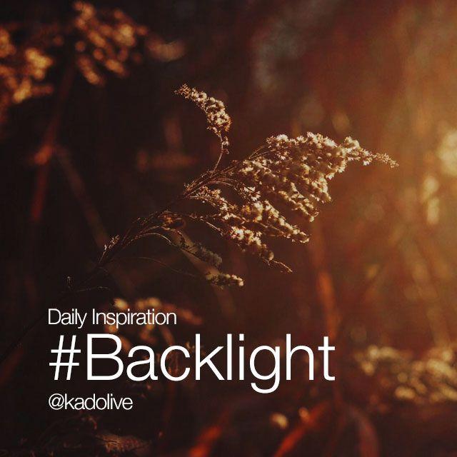 #backlight