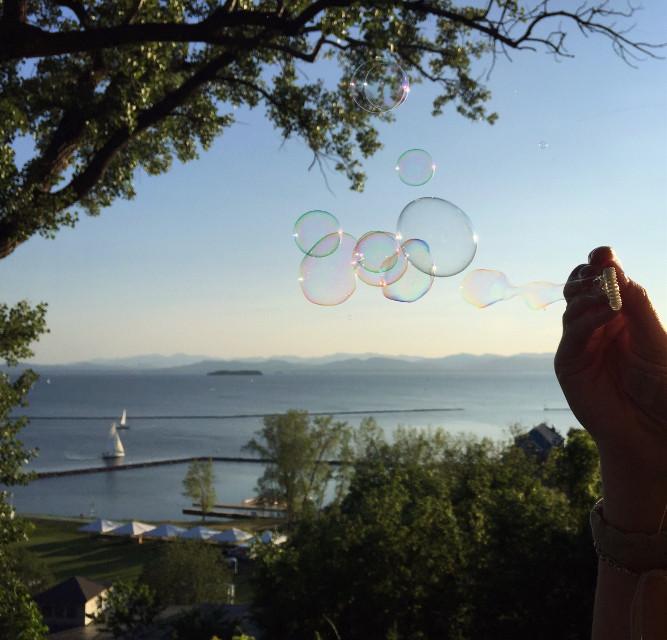 #bubbles  #vermont  #interesting #dpcbubbles