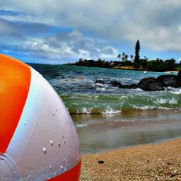 beach maui ocean