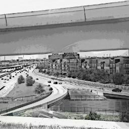 skecher freeway blackandwhite houston city
