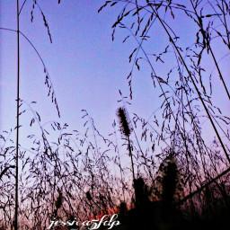 simplethings freetoedit sunset beautifypicsart photography
