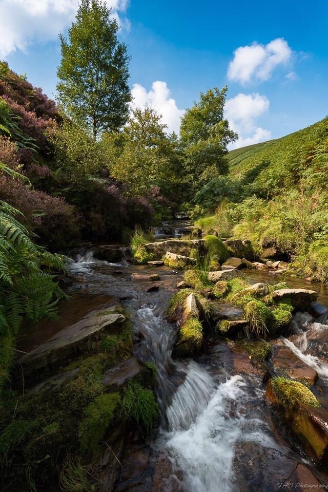 Fairbrook in the Peak District.  #peakdistrict  #landscape  #landscapephotography  #nature  #brook  #water  #flowing  #heather  #bracken  #photography  #derbyshire  #england