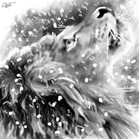 dcsketch drawing digitaldrawing petsandanimals snow