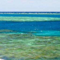 australia greatbarrierreef reef ocean queensland