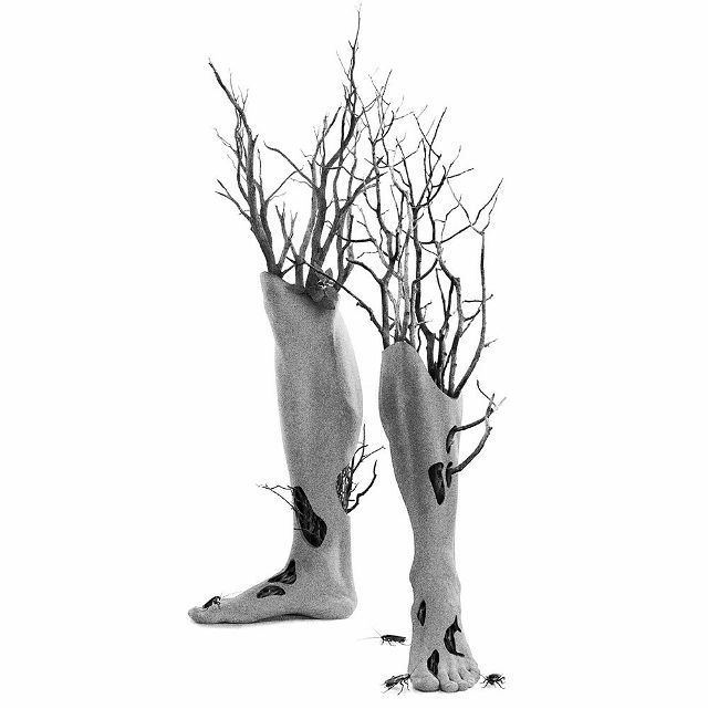 Feet into tree photo manipulation by @damepistachos